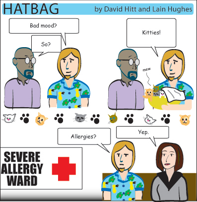 Hatbag by David Hitt and Lain Hughes comic strip six words a little something in the kitty webcomic